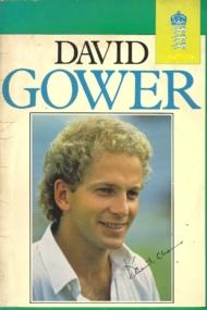 David Gower Benefit Brochure
