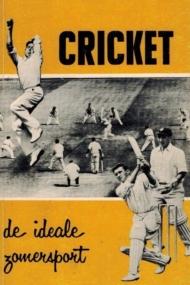 Cricket, de ideale zomersport